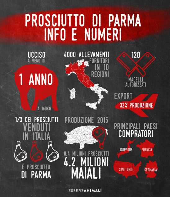 infografica prosciutti