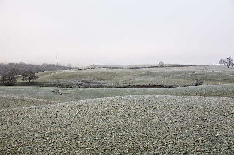 Rolling Frosty Hills