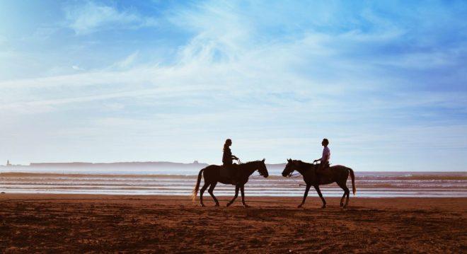 The Four Horsemen: Criticism, Contempt, Defensiveness, and Stonewalling
