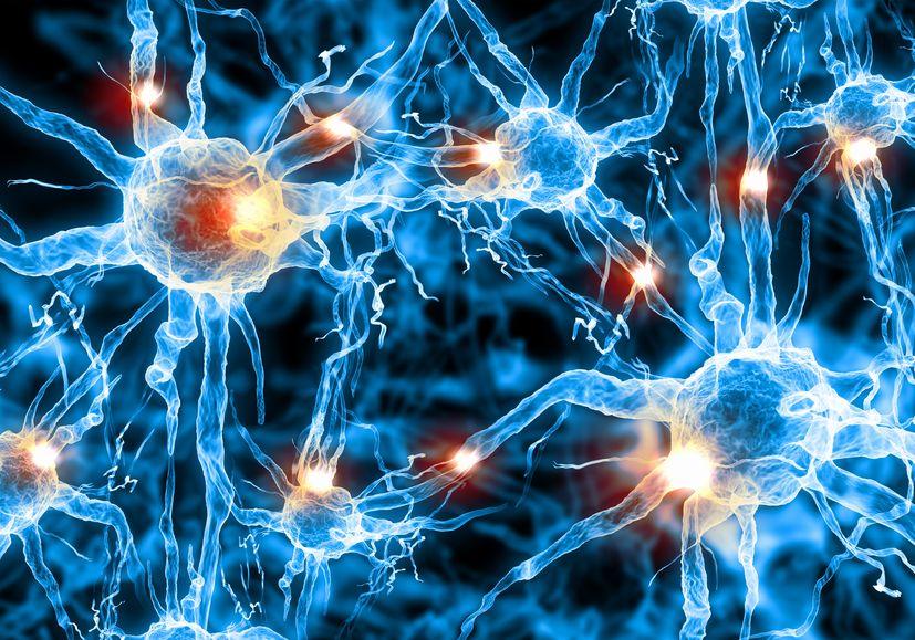 Psychobiotics: Bacteria For Your Brain?