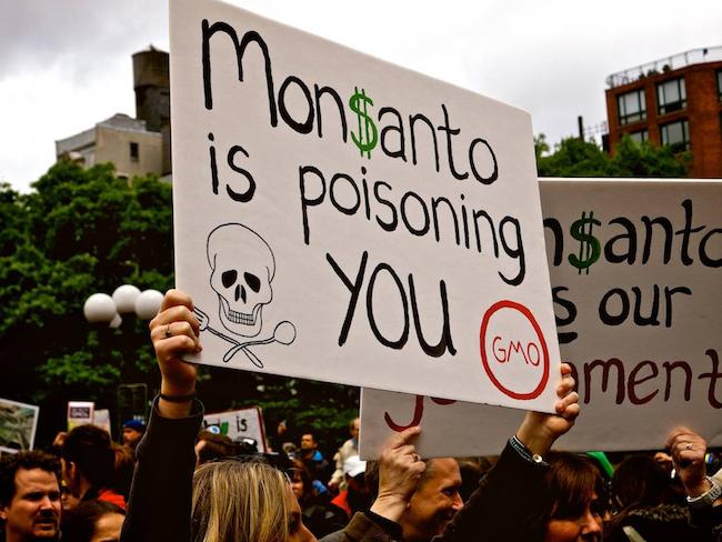 Merge-Santo: New Threat to Food Sovereignty