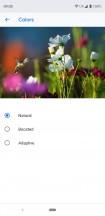 Display settings - Google Pixel 3 XL review