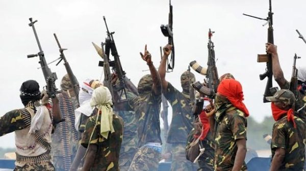 Ultimate Warriors of Niger Delta