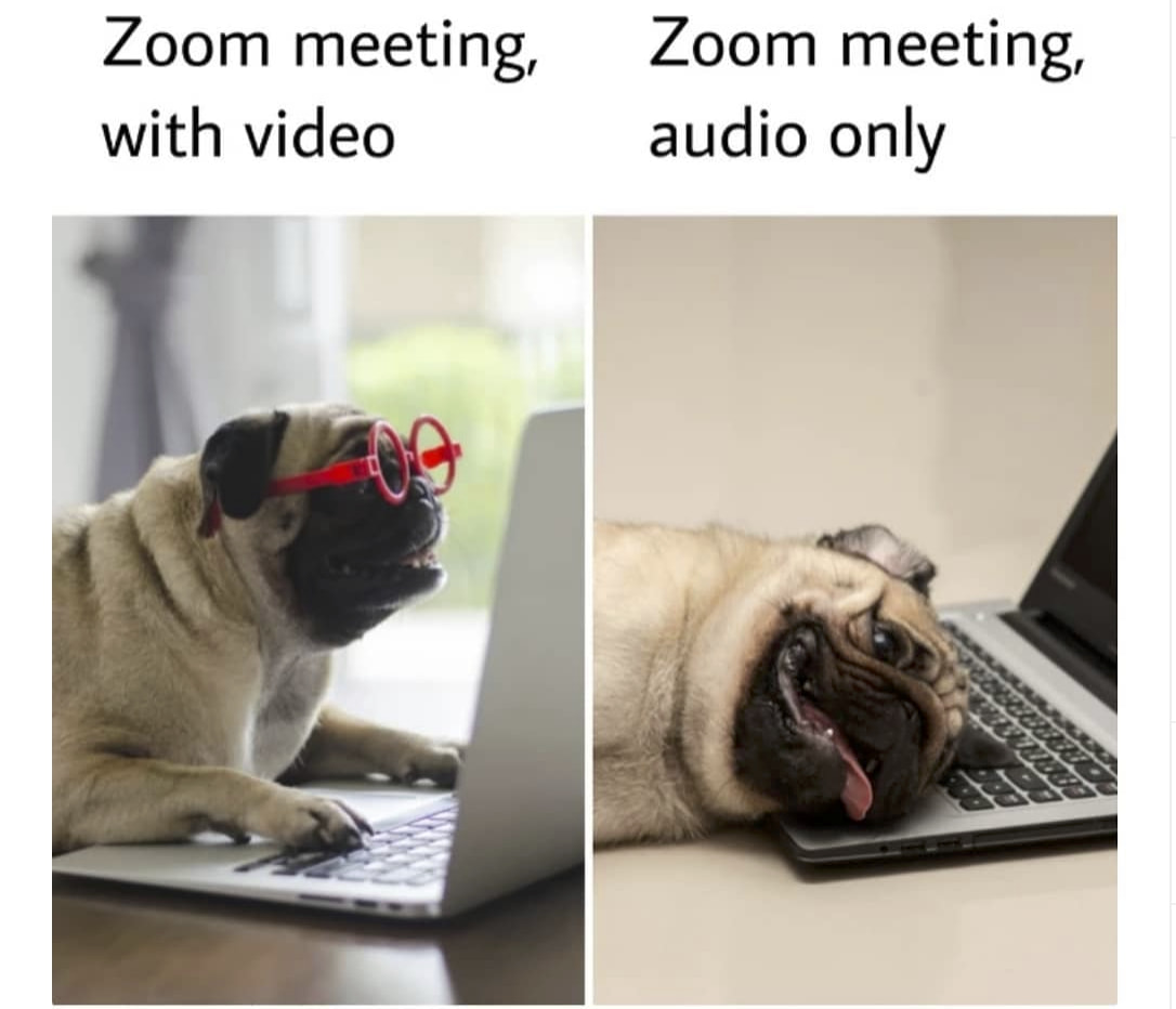 Don T Get Bombed How To Host Zoom Meetings Hangouts Houseparty
