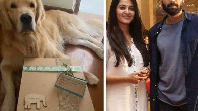 Anushka Thanks Rana For Sending Surprise Goodies