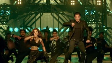 Salman Khan Uses One More Song Of Allu Arjun