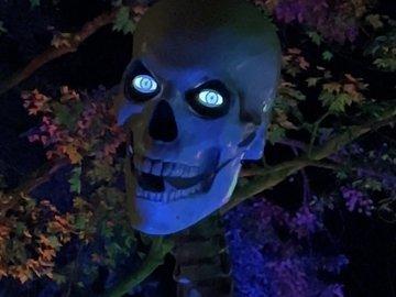 3-Axis Skull Mod for 12ft Skeleton