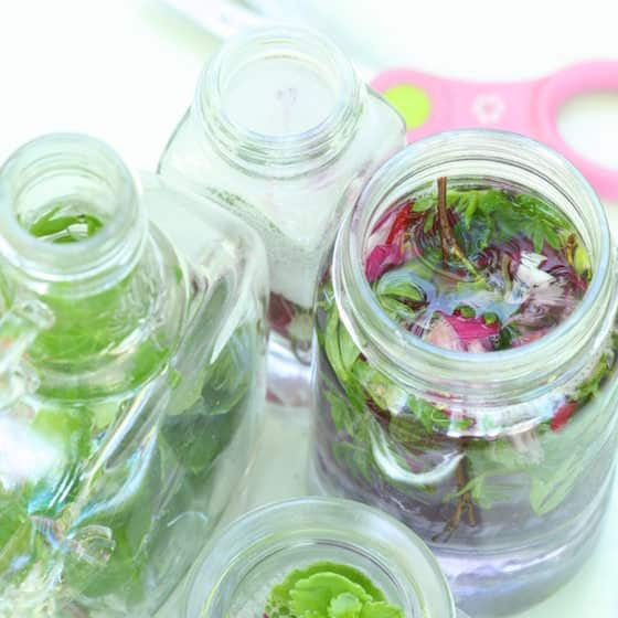 glass jars and bottles filled with leaves, water and flowers