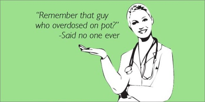 overdose hero 21 Shocking Weed Facts That Will Make You Say OMG