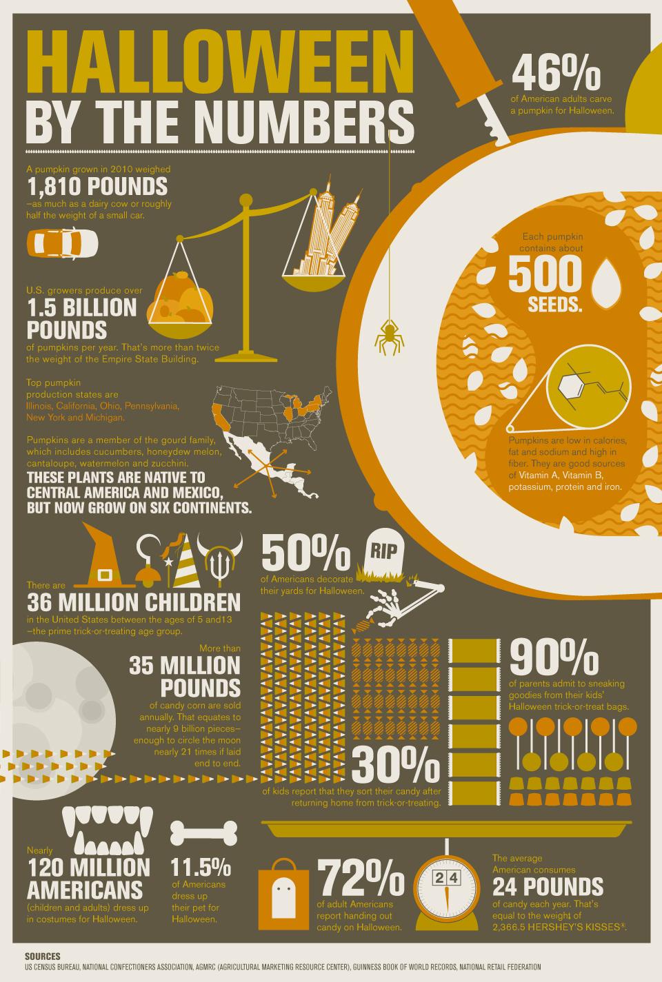 Halloween infographicc