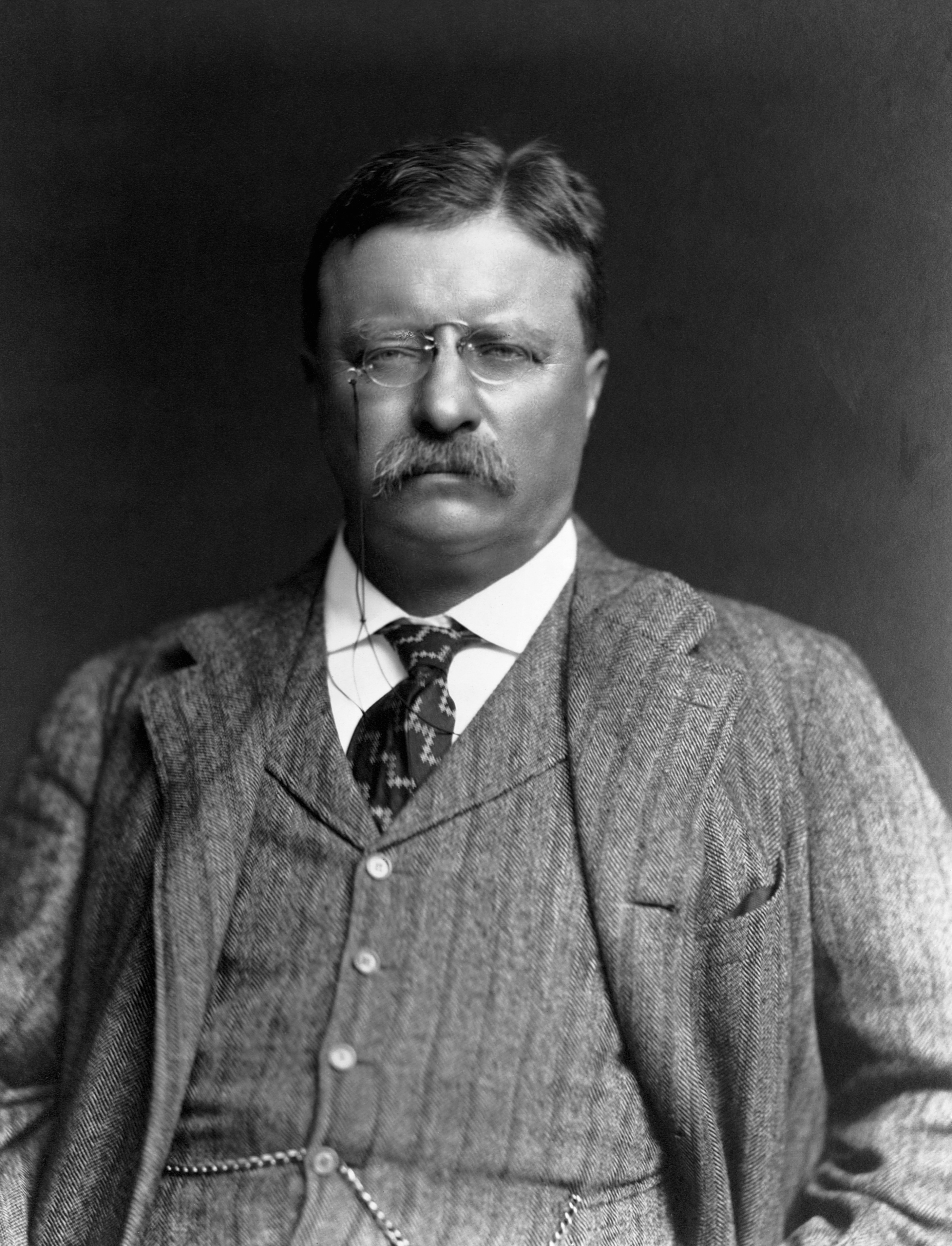 Theodore Roosevelt Pictures
