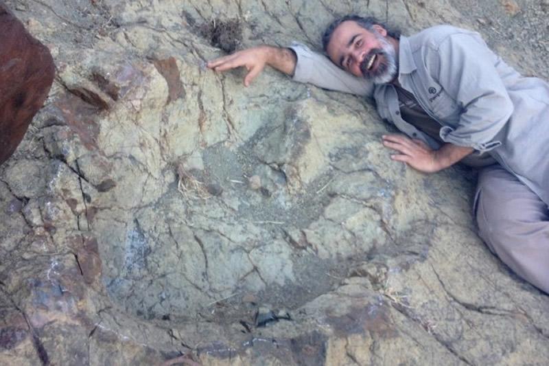 Giant Foot Print Dinosaur