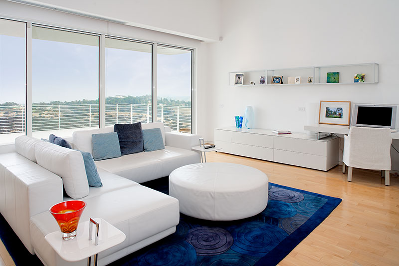 Royal Blue Area Rug Interior Design Ideas