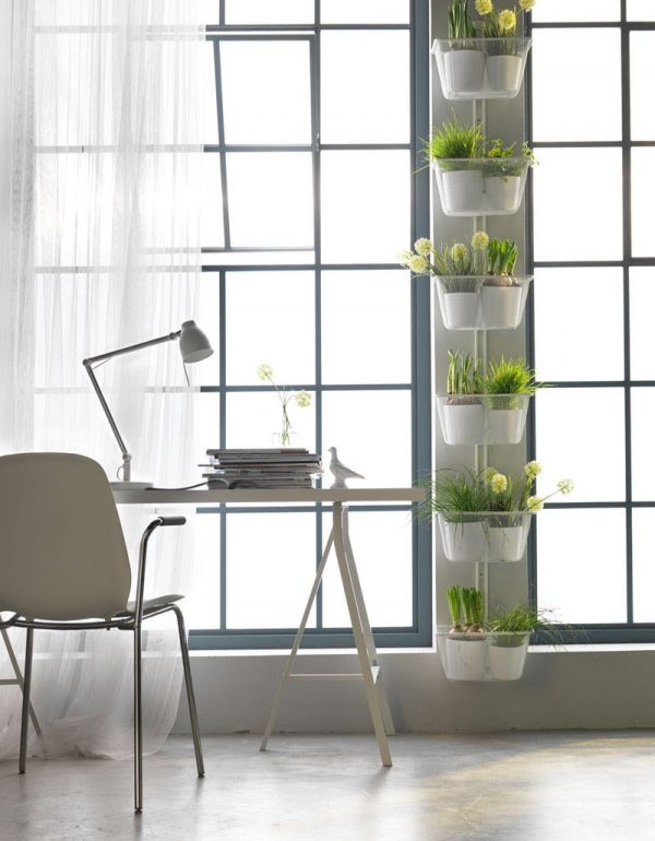 Where Buy Hanging Plant Holders
