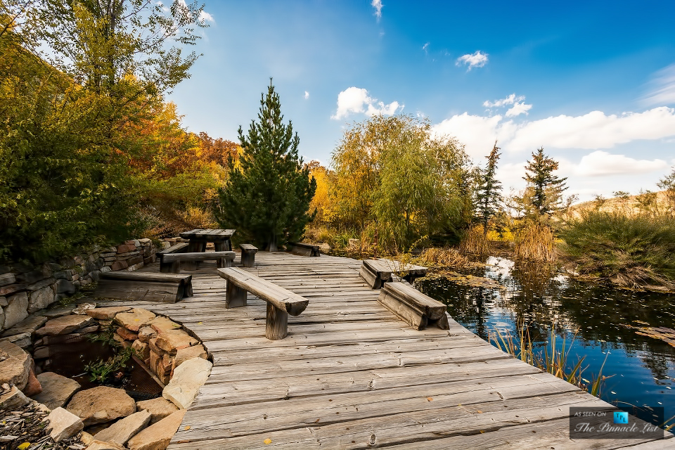 Decks around the home exterior enjoy views over the ponds the changing colours of the trees and bright skies