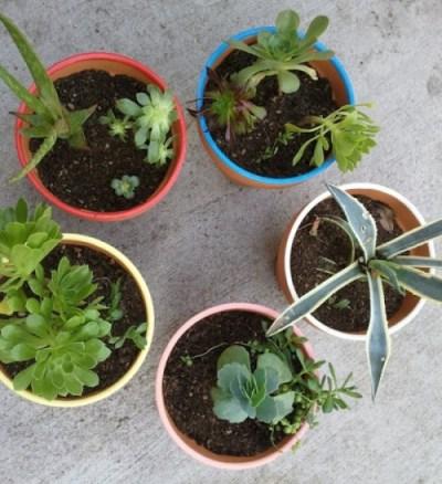 30 vasi fai da te 2 guida giardino for Vasi fai da te
