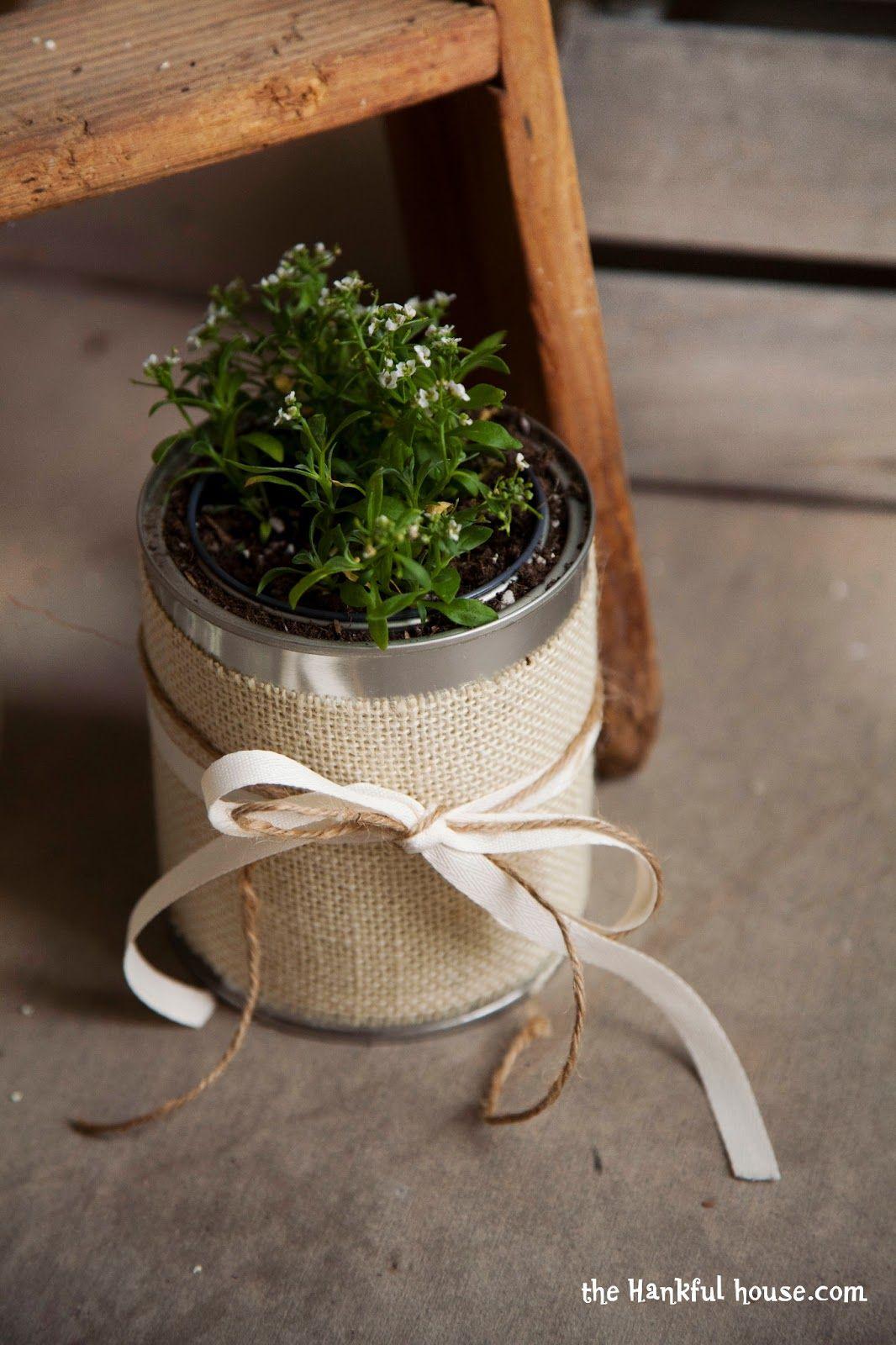 Plant Pots 10