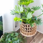 31 Diy Plant Stands That Let You Explore Your Creativity