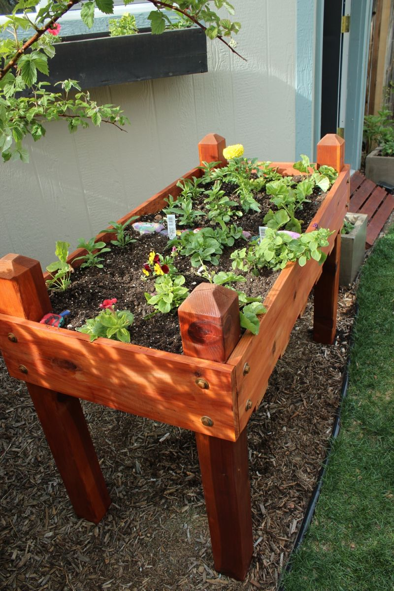 DIY Raised Flower Box - colorful flower