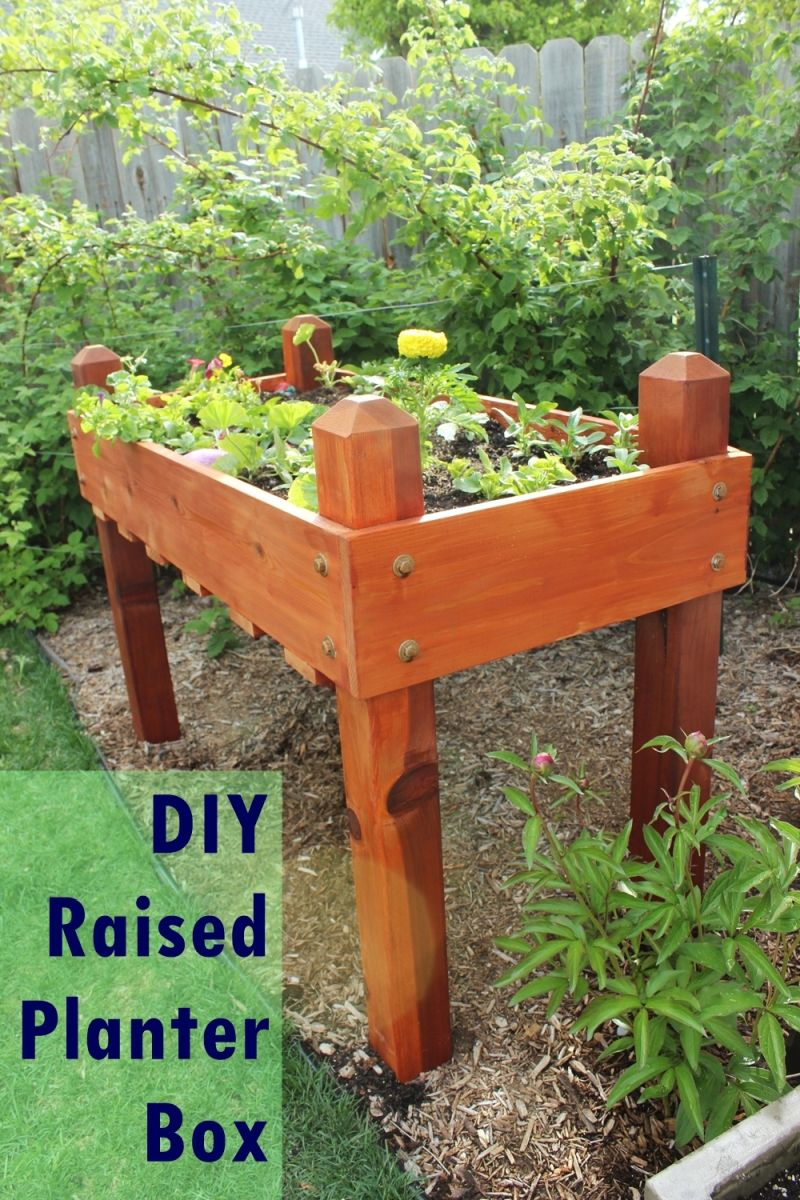 DIY Raised Flower Box for Summer