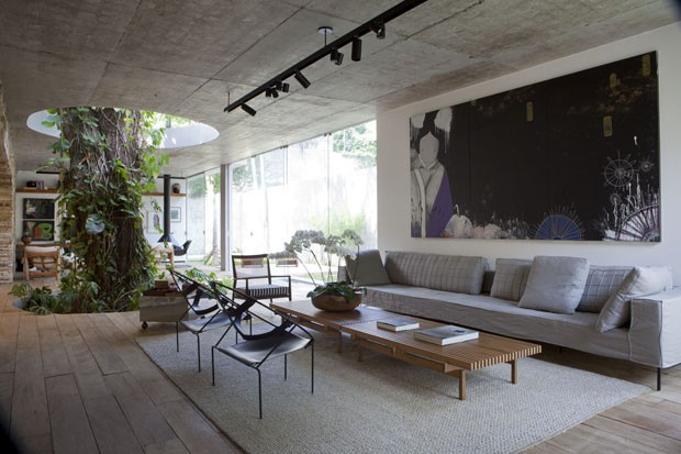 Brazilian house with a tree in the living room