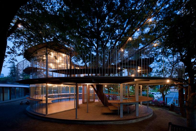 Ring around tree project