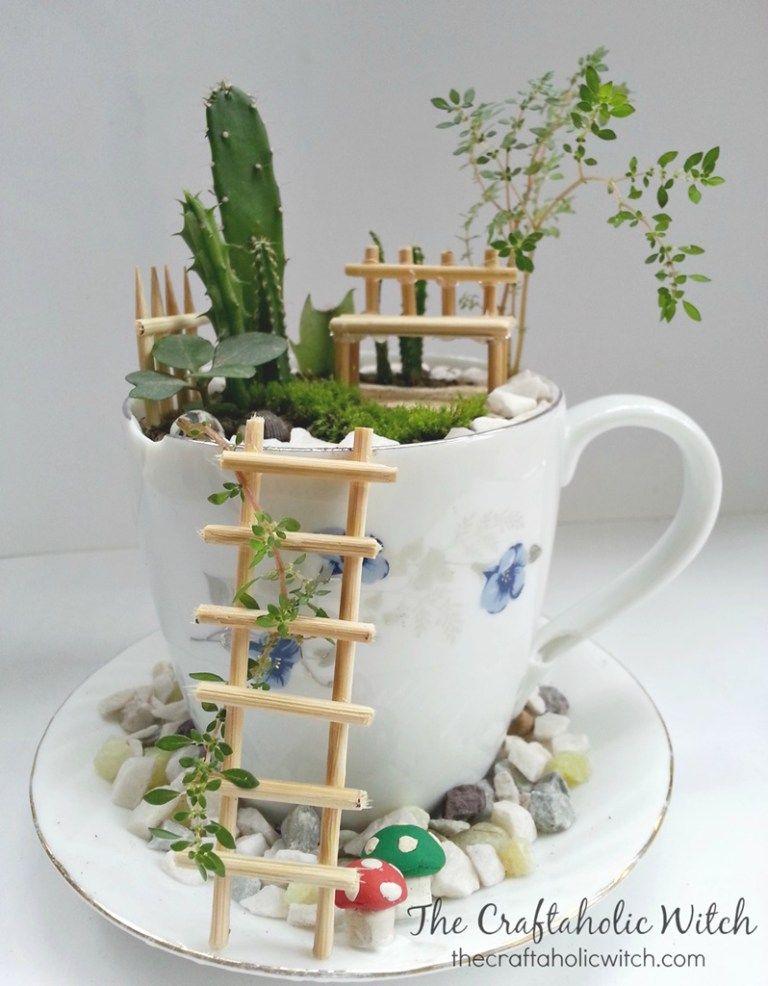 Cup mini garden