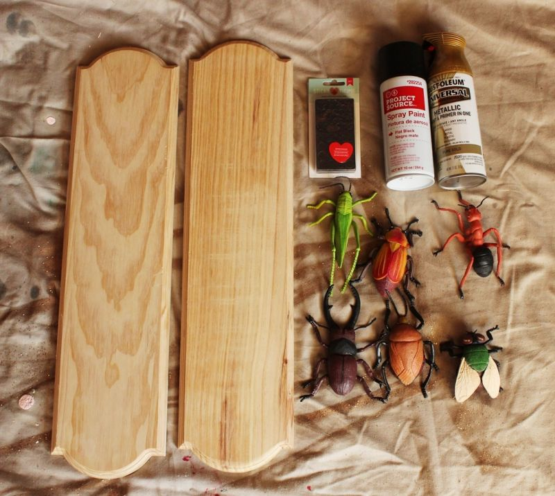 DIY Insect Taxidermy - supplies