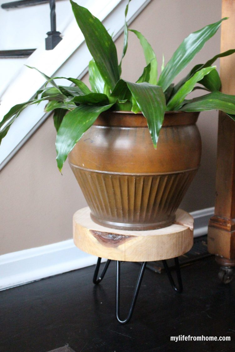 DIY hairpin plant stand
