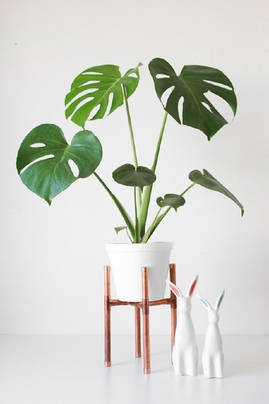 DIY pipe plant stand