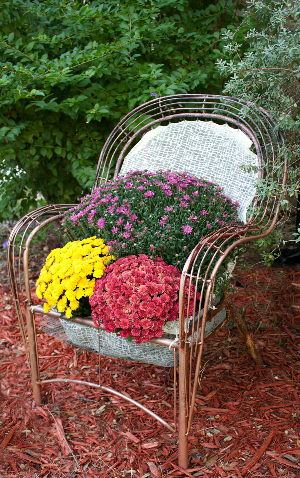 Turn a Chair into a Garden Bed
