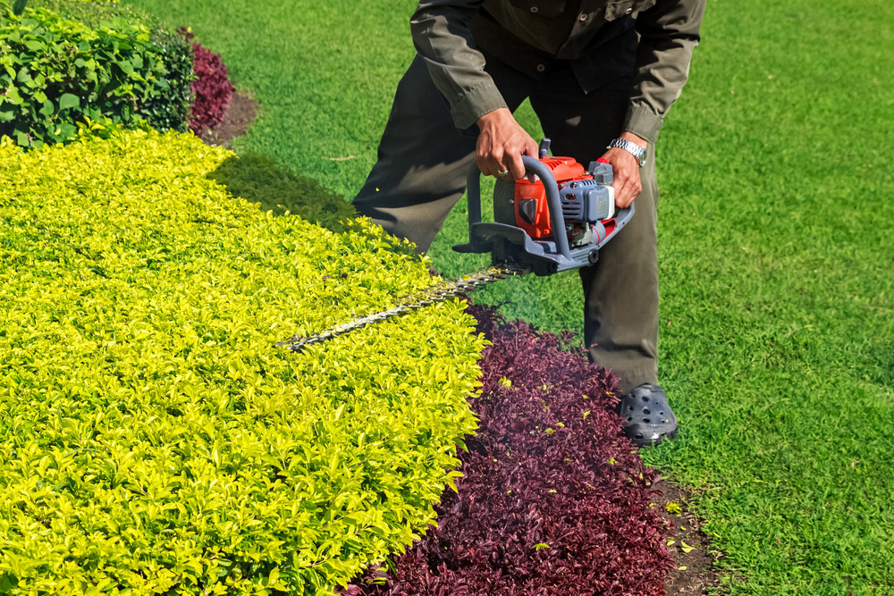 2021 Average Cost Of A Gardener With Local Prices Homeguide