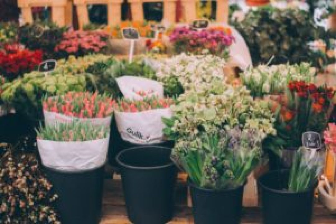 market where you can get wedding flowers