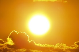 How To Get Vitamin D From Sunlight