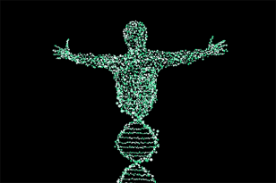 What Can A DNA Test Really Say About You (Part II)