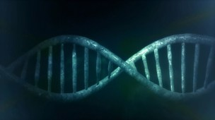 DNA Sequence.