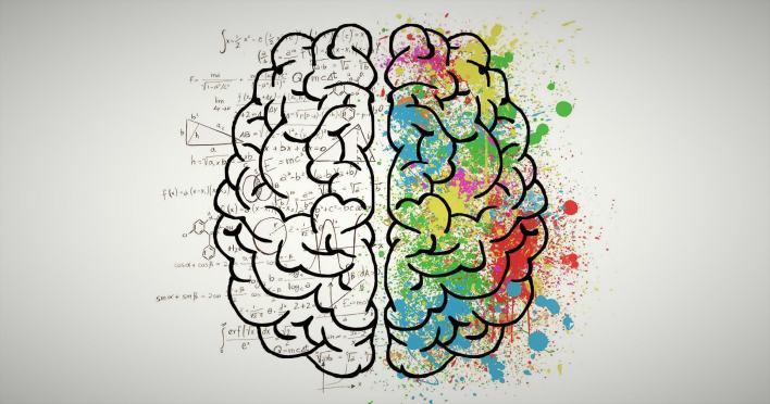 الذاكرة البشرية: ما هي أنواعها؟ وكيف تعمل؟ – إضاءات