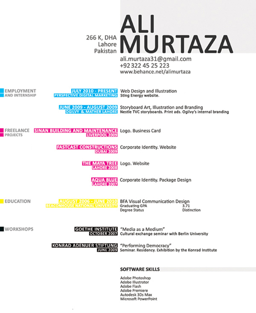 Artist Resume Examples Samples. 10 awesome infographic resume ...