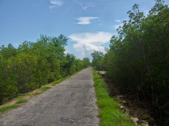 5 Panorama Wisata di Pulau Sapudi Madura, Bikin Hati Adem!