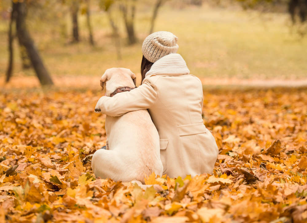 Do Dogs Love Their Owners