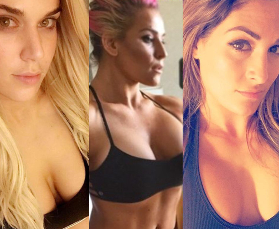 The hottest WAGs in wrestling