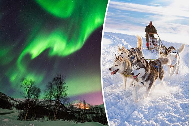 Northern Lights Forecast Tromso