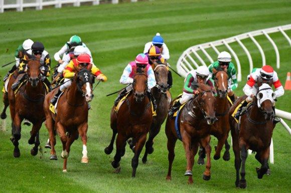 Horse Racing Betting Tips May 16: York, Yarmouth, Bath ...