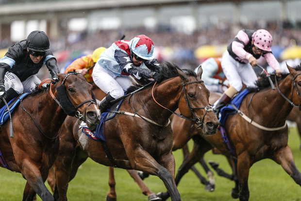 Horse Racing Tips May 26: Goodwood, Haydock, Chester ...
