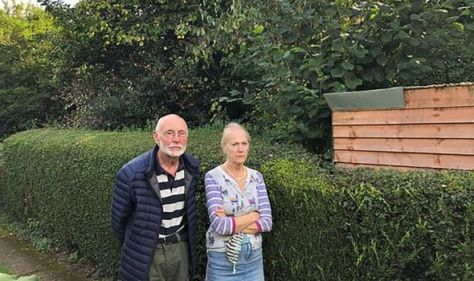 RAF musician who played for the Queen furious at overgrown garden next door