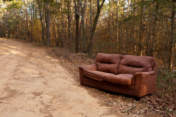 Sofa dumped in a forest