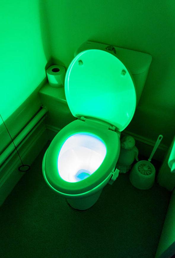 Glow-in-the-dark toilet