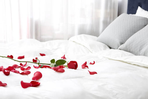 Rose petals on a bed