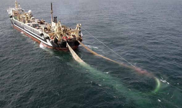 Pelagic Freezer-trawler Association Margiris