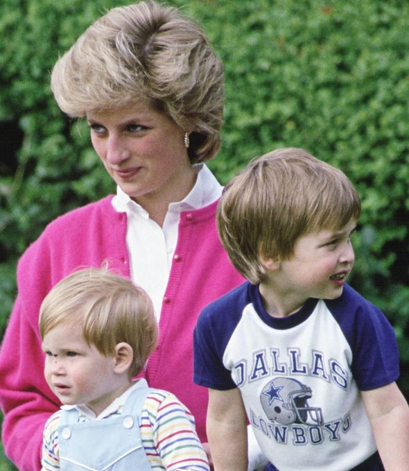 Princess Diana News: Many royal experts have speculated that Prince William could or even should become king instead of his father